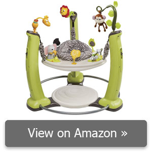 Evenflo ExerSaucer Jump and Learn Jumper review