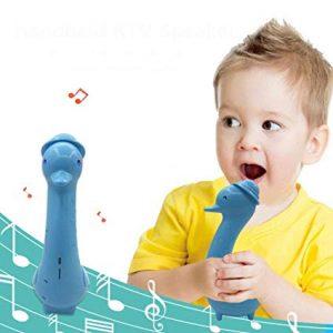 Best Kid-Friendly Karaoke Machine - Durability